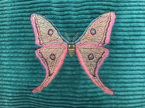 Kussen vlinder roze